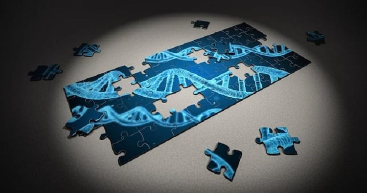 遺伝的機械学習のプログラミング